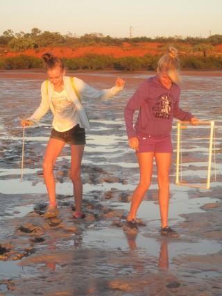 Seagrass monitoring is an awesome experience of real science. © Kandy Curran