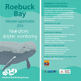Dolphin Monitoring Card